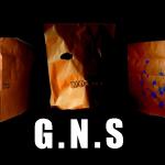 G.N.S